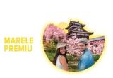 1 x excursie de 2 persoane in Japonia in sezonul cireșilor infloriți