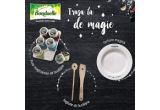 5 x trusa de magie pentru bucatarie - kit Bonduelle (set condimente + farfurie magica + set de baghete de bucatarie)