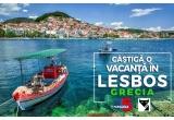 1 x pachet complet de servicii (transport avion + transfer aeroport-hotel-aeroport + cazare 3* + mic dejun) in insula Lesbos - Grecia