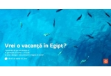 1 x excursie pentru 2 persoane in Hurghada – Egipt cu 7 nopți de cazare in regim demi-pensiune sau all inclusive in hotel/vila de 3 sau 4 stele și transport cu avionul din București,dus-intors cu taxe de aeroport incluse