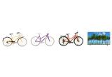 16 x Bicicleta Pegas, 3 x televizor 4K Ultra HD