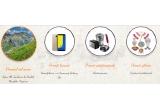 504 x Produs tradițional romaneșc (Linguri de lemn/ Ștergar/ Vas/ Castron/ Farfurie/ Vaza/ Suport Șervețel/ Solnița), 18 x Electrocasnic (Prajitor de paine Heinner/ Sandwich Maker Heinner/ Mixer vertical Daewoo/ Storcator de citrice Heinner), 4 x Smartphone Samsung Galaxy J6, 1 x Excursie la poalele munților Fagaraș
