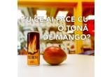 5 x doze Burn si fructe mango cate 1/zi pana la finalul anului 2019