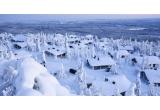 1 x excursie de 5 nopți in Finlanda pentru 2 persoane cu cazare de 4 nopți la Kelo Cottage (mic dejun și cina incluse) + 1 noapte intr-un iglu (incluzand echipament de dormit + mic dejun + sauna și duș la intoarcerea in hotel) + bilete de avion + transferul catre și de la aeroportul din Oulu + vizita la o ferma de reni + plimbare cu sania trasa de caini
