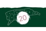 20 x semicarcasa de porc refrigerata Kosarom cu o greutate de aproximativ 25 – 30 kg