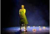 1 x invitatie dubla la spectacolul pentru copii Vrajitorul din Oz