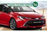 1 x mașina Toyota Corolla Hybrid, 20 x sejur la mare 5 zile cazare la Hotel Astoria din Mamaia, 250 x voucher de cumparaturi Shopius.ro de 150 lei, 5000 x bax cu bere Meister 0.33l x 8 sticle