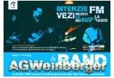 4 invitatii duble la concertul AG Weinberger (Cafeneaua Actorilor, Bucuresti )<br />