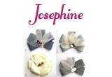 <p>4 brose Fleurs de Josephine oferite de Mayra si Josephine</p>