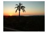 <p> O excursie in Palma de Mallorca<br /> </p>