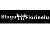 un domeniu.com + hosting profesional timp de 6 luni + un stick pendrive de 4GB, un domeniu.com + hosting profesional timp de 3 luni + un banner pe Florinelu.com timp de o luna, un domeniu.com, un Link + banner pe blogul Florinelu.com (PR4)