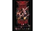 doua bilete la concertul Aerosmith